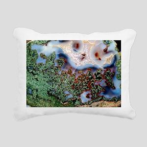 Moss agate - Pillow