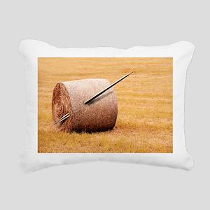Needle in a haystack, conceptual artwork - Pillow
