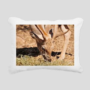 Persian Fallow Deer - Pillow