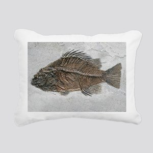 Prehistoric perch fossil - Pillow