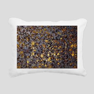 Pallasite meteorite - Pillow