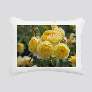 Rose (Rosa 'Charlotte Auspoly') - Pillow
