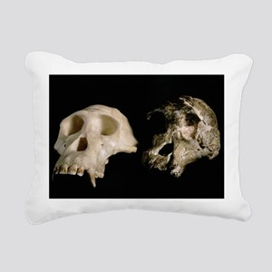 Skulls of A. africanus and a chimpanzee - Pillow
