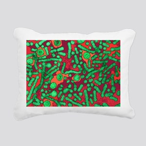 Hepatitis B viruses - Pillow