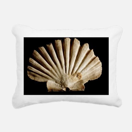 Scallop shell - Pillow
