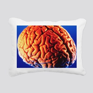 Human brain - Pillow