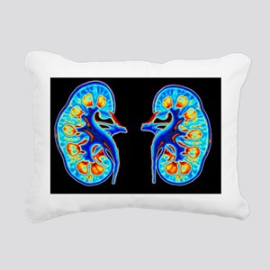 Human kidneys - Pillow