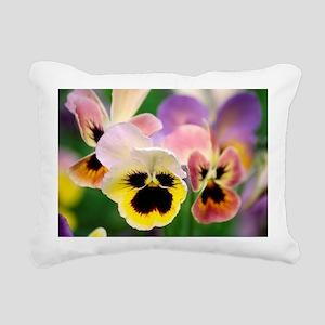 Pansies (Viola wittrockiana) - Pillow