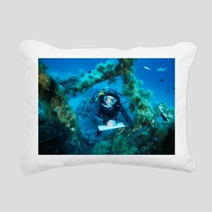 Underwater biological research - Pillow