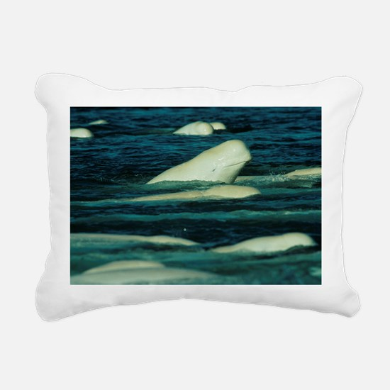 Beluga whales - Pillow