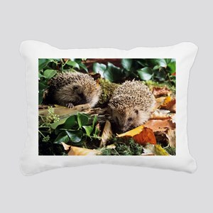 Baby hedgehogs - Pillow
