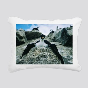 Blue eyed shag - Pillow