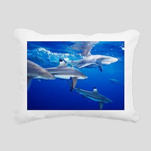 Blacktip reef sharks - Pillow