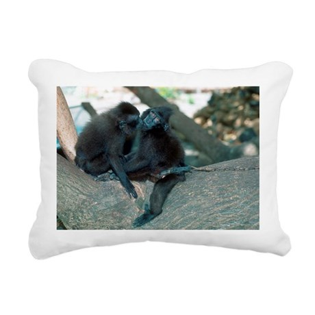 Captive crested black macaques - Pillow