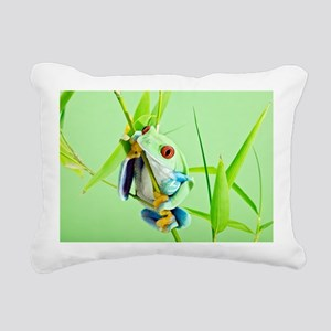 Red-eyed tree frog - Pillow