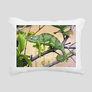 Flap-necked chameleon - Pillow