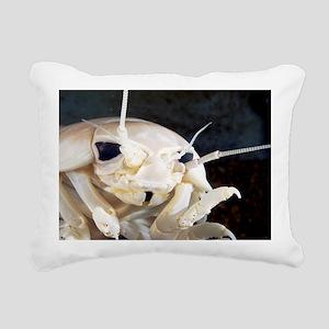 Giant isopod - Pillow