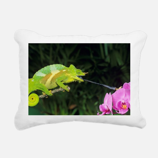 Four-horned chameleon - Pillow