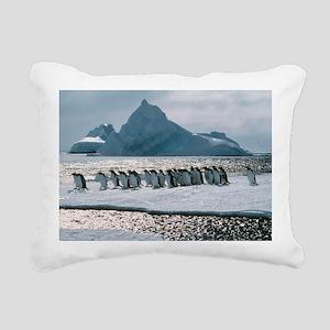 Gentoo penguins - Pillow