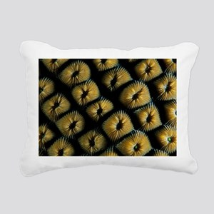 Great star coral - Pillow