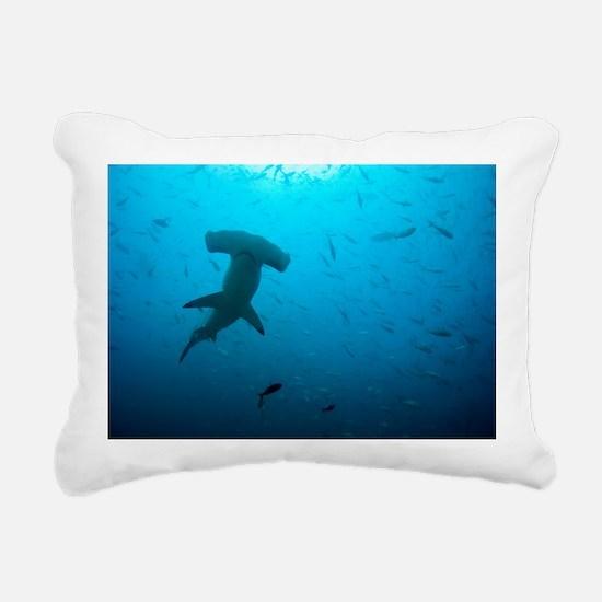 Hammerhead shark - Pillow