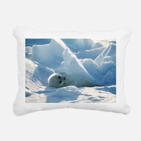 Harp seal pup - Pillow