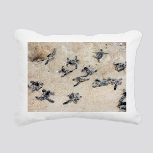 Green turtle hatchlings - Pillow