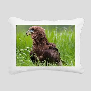 Harris hawk - Pillow