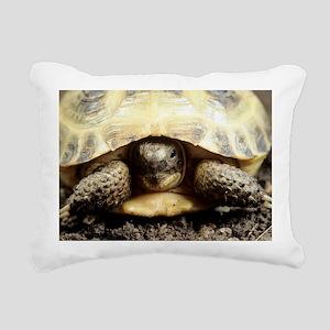 Horsfield tortoise - Pillow