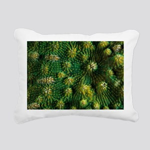 Knobby cactus coral - Pillow