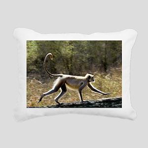 Langur monkey - Pillow