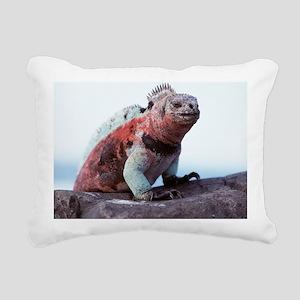 Marine iguana - Pillow