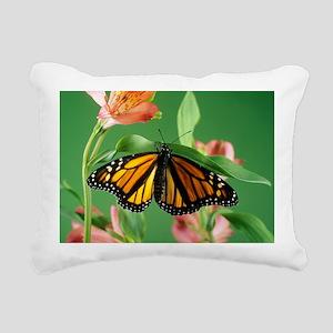 Monarch butterfly - Pillow