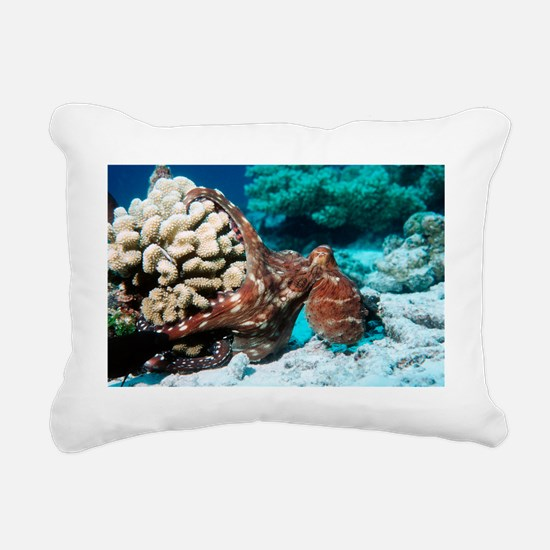 Octopus hunting - Pillow