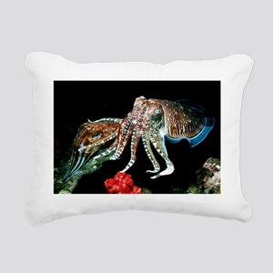 Pharaoh cuttlefish - Pillow