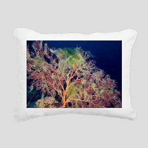 Sea fan - Pillow