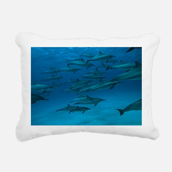 Spinner dolphins - Pillow