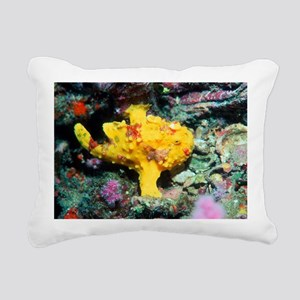 Warty frogfish - Pillow