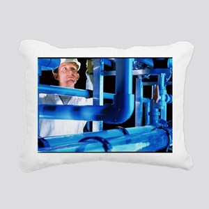 Water treatment plant - Pillow