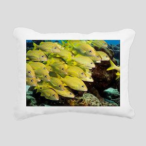 White grunt fish - Pillow