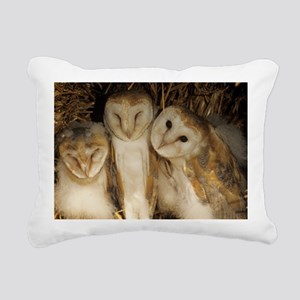Young barn owls - Pillow