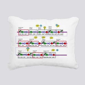 Genetic circuit diagram - Pillow