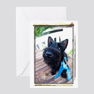 Funny scottish birthday greeting cards cafepress scottie dog puppy greeting card m4hsunfo