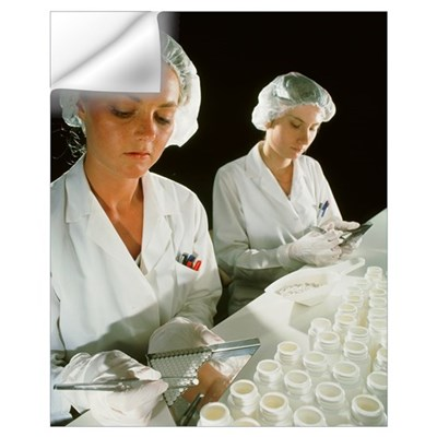 Female technicians counting pills into a bottle Wall Decal