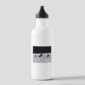 5 Big Wild Turkeys Stainless Water Bottle 1.0L