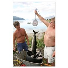 Fishermen weighing their catch Poster