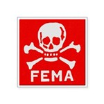 FEMA Square Sticker 3