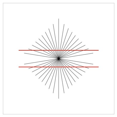 Hering illusion Poster