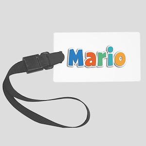 Mario Spring11B Large Luggage Tag