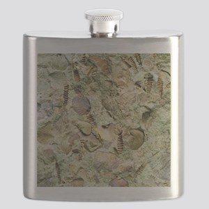 A mixed assemblage of fossils - Flask